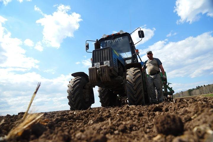 Официальные данные: ВКраснодарском крае 18 тыс. нигде неработающих