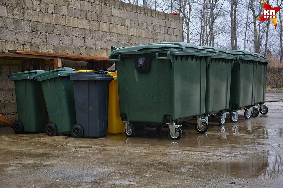Навосстановление контейнерных площадок вОрле требуется неменее 3 млн руб.
