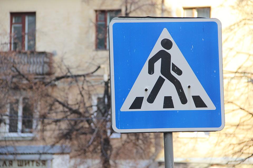 ВВоронеже под суд пойдет сбивший на Ауди A6 пенсионерку шофёр