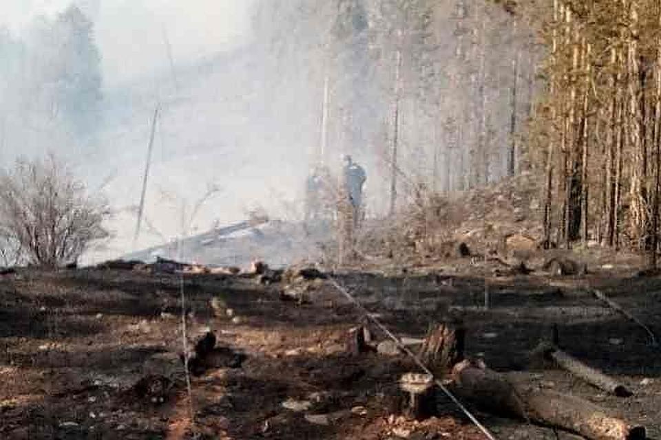 Уголовное дело завели на руководителя поселения запожар вселе Черемушки