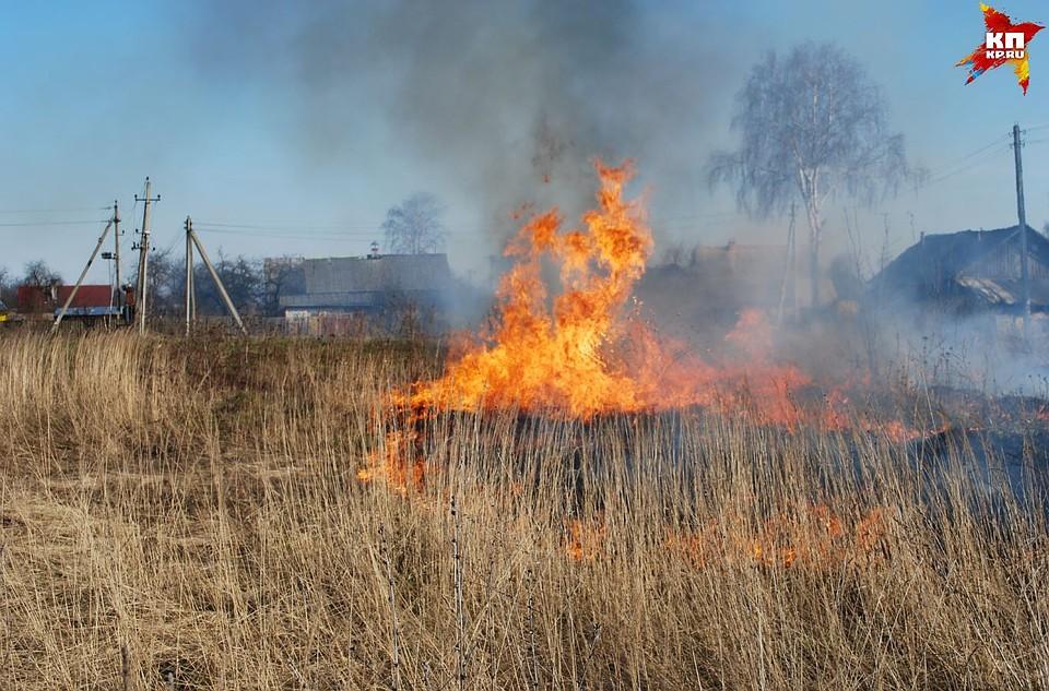 НаУрале зафиксированы пожары на15 тысячах гектаров сельхозугодий