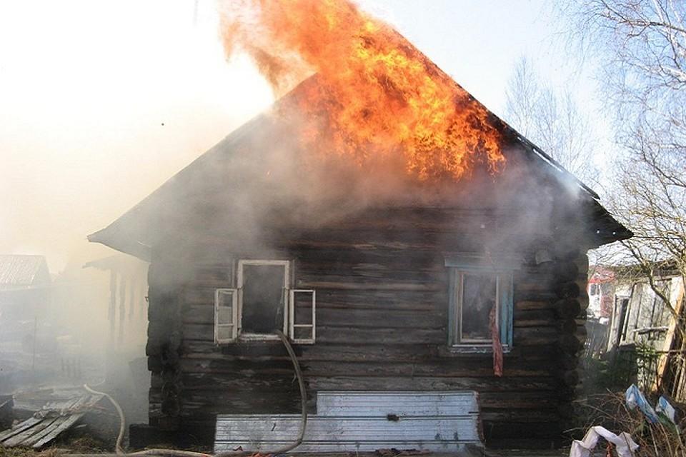 Юноша заперся и живьем сгорел вдачном доме вВологодской области