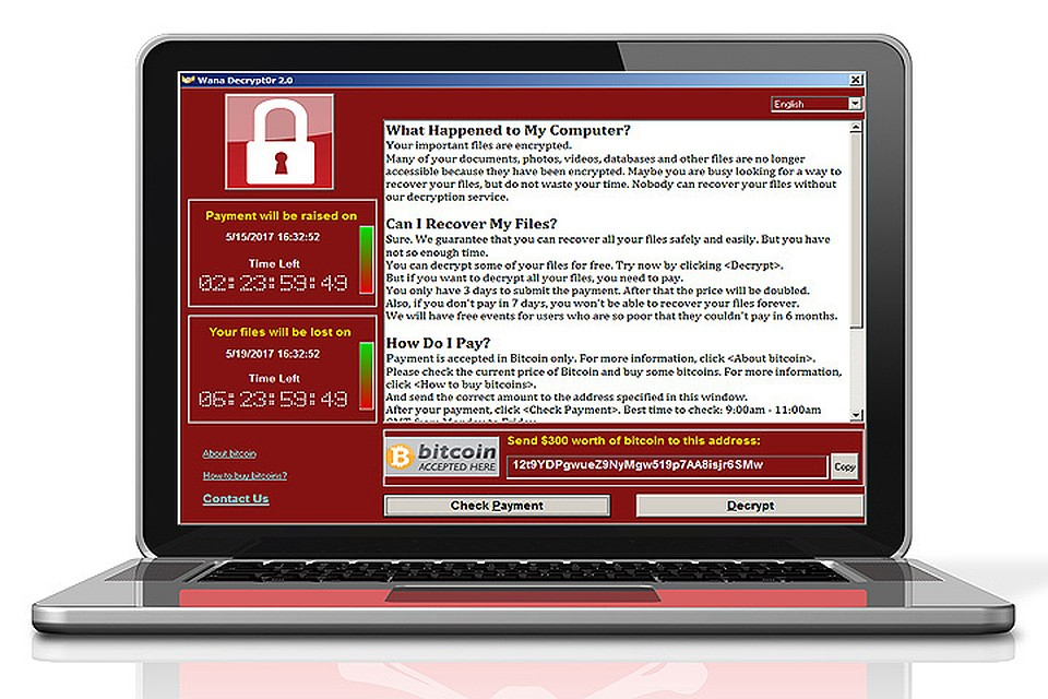 Вирус поразил тысячи компьютеров по всему миру