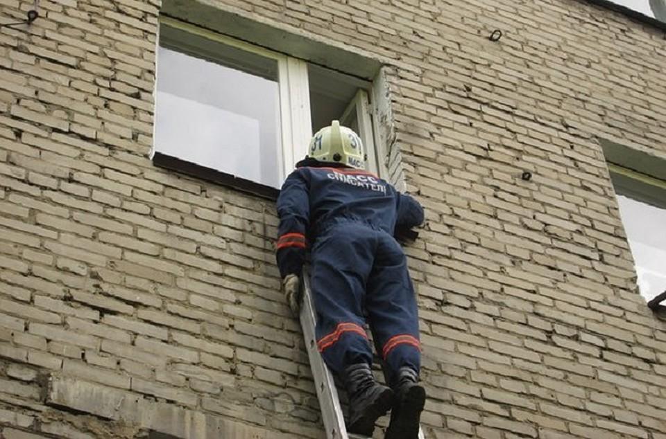 ВНовосибирске спасли ребенка, опершегося намоскитную сетку вокне многоэтажки