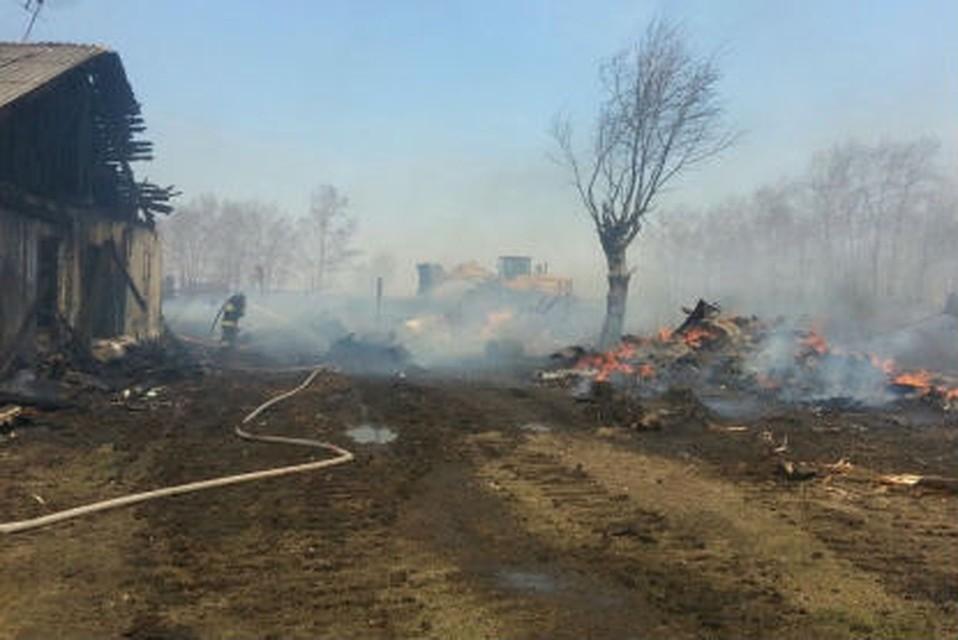 Неменее  20 домов сгорели вТайшетском иЧунском районах