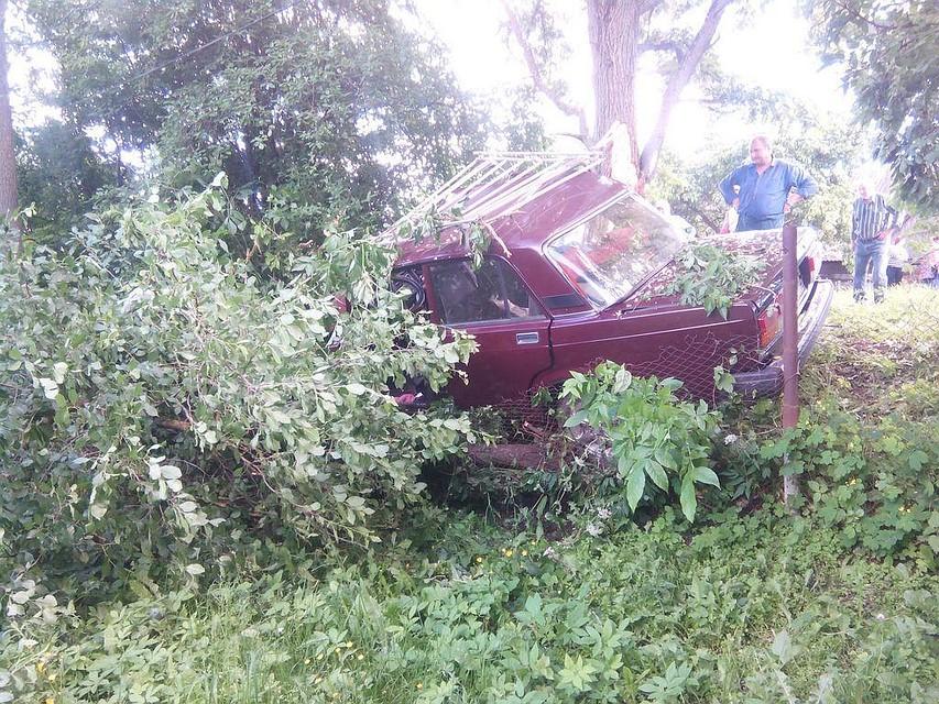 ВТульской области пассажир «ВАЗа» умер  после столкновения сдеревом