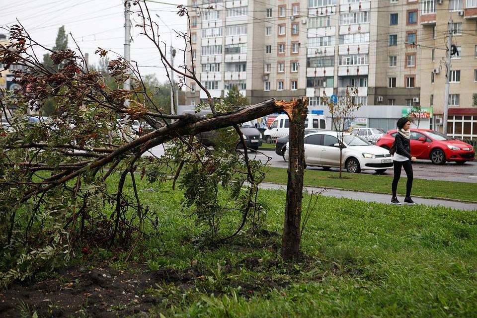 НаСтаврополье 29 и30июня реален сильный дождь сгрозой— МЧС