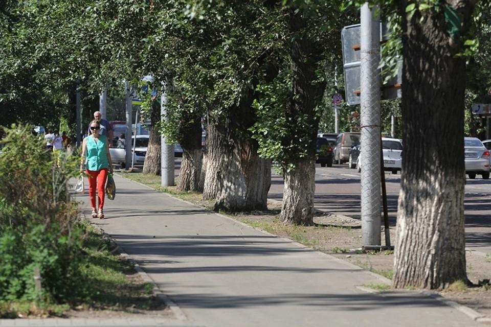 Погода вУкраинском государстве навыходные: кое-где дожди ижара до +27°