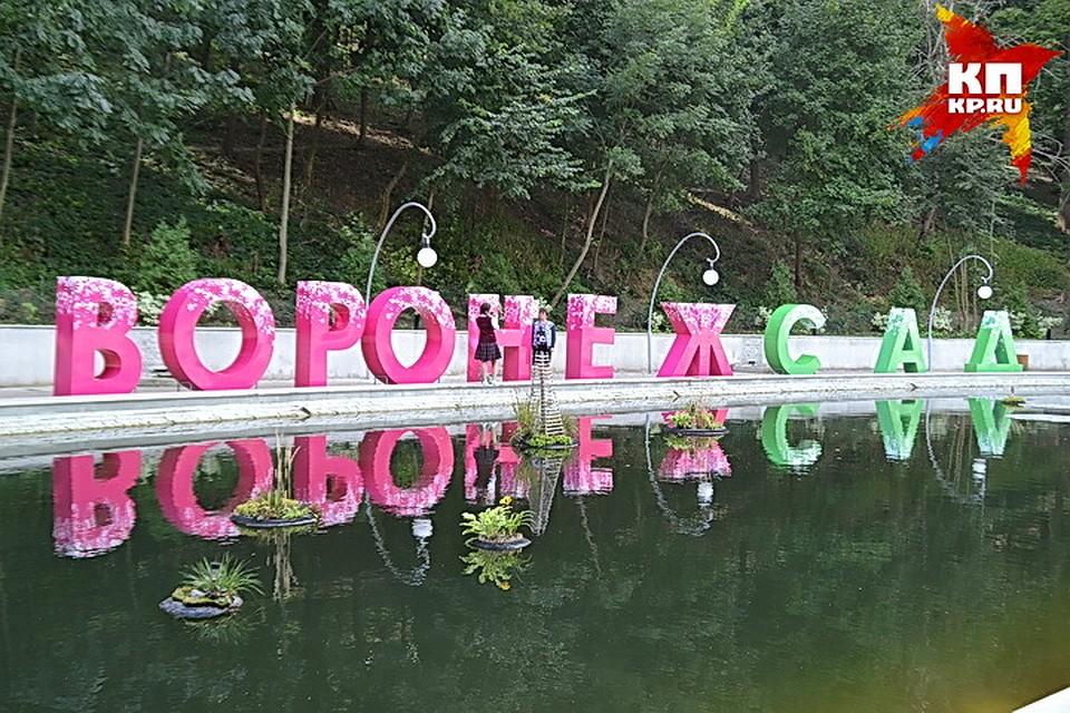 Стартовал прием заявок наворонежский фестиваль «Город-Сад»