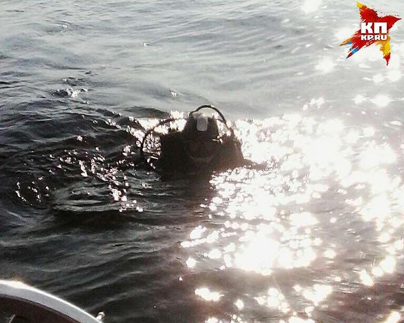 ВСаратовской области ищут тело утонувшего 13-летнего подростка