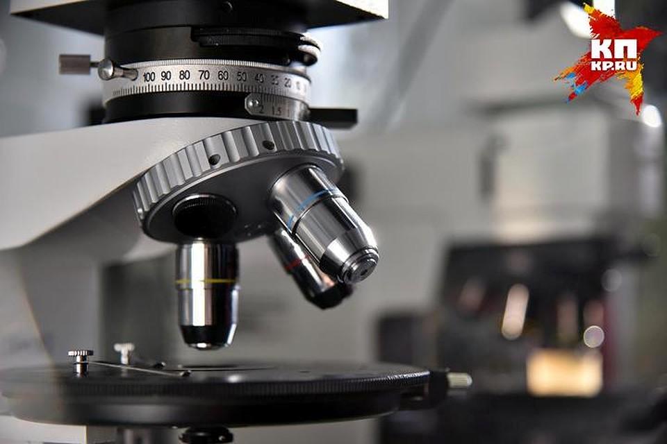 Новосибирские ученые создали препараты бактериофагов, способные справиться сустойчивыми бактериями