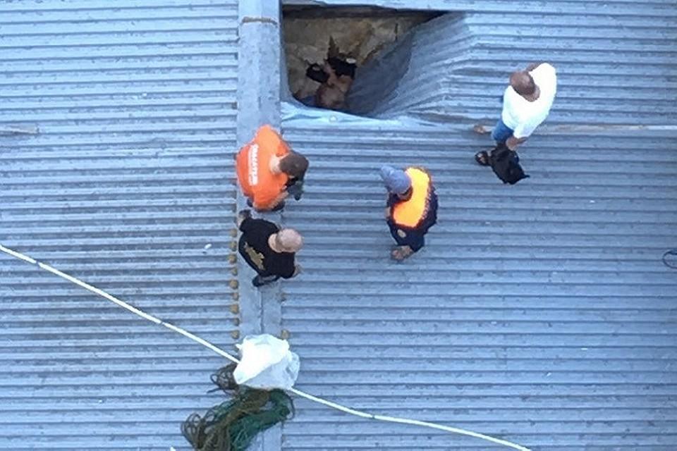 ВСтаврополе мужчина выпал изокна 17 этажа и умер