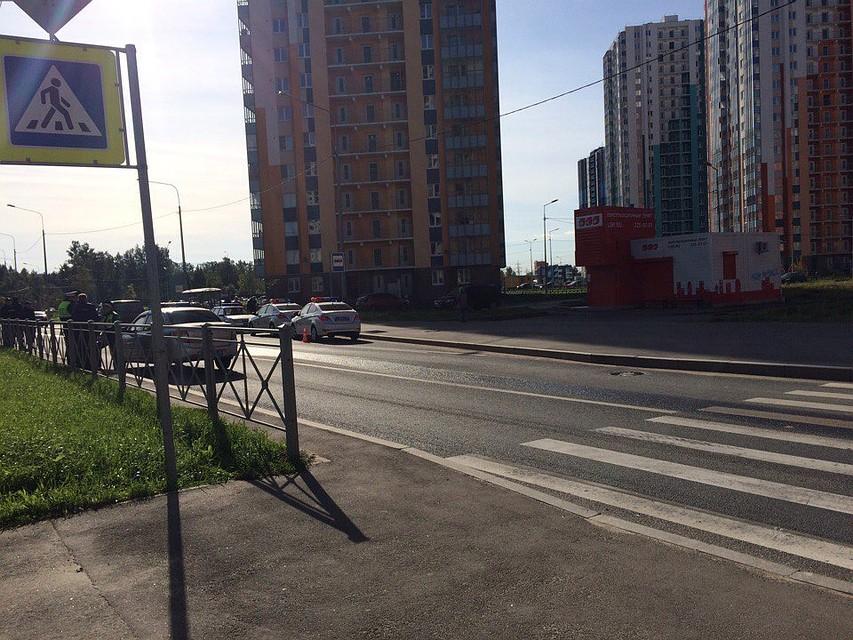 ВПетербурге полицейская машина сбила ребенка на«зебре»— свидетели