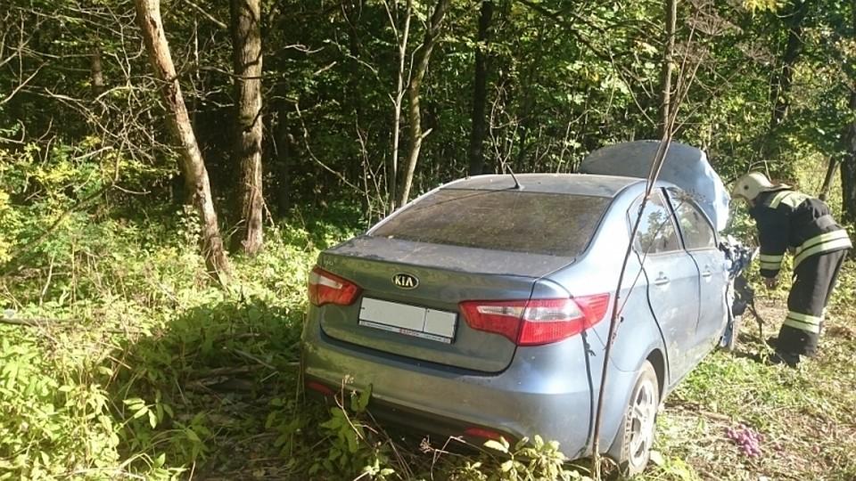 Врезультате дорожного происшествия натрассе вТуле умер мужчина, продававший грибы