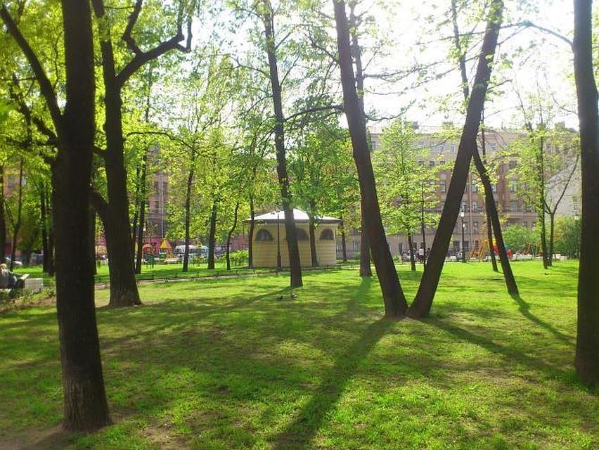 Митинг против уплотнительной застройки центра прошел вОвсянниковском саду