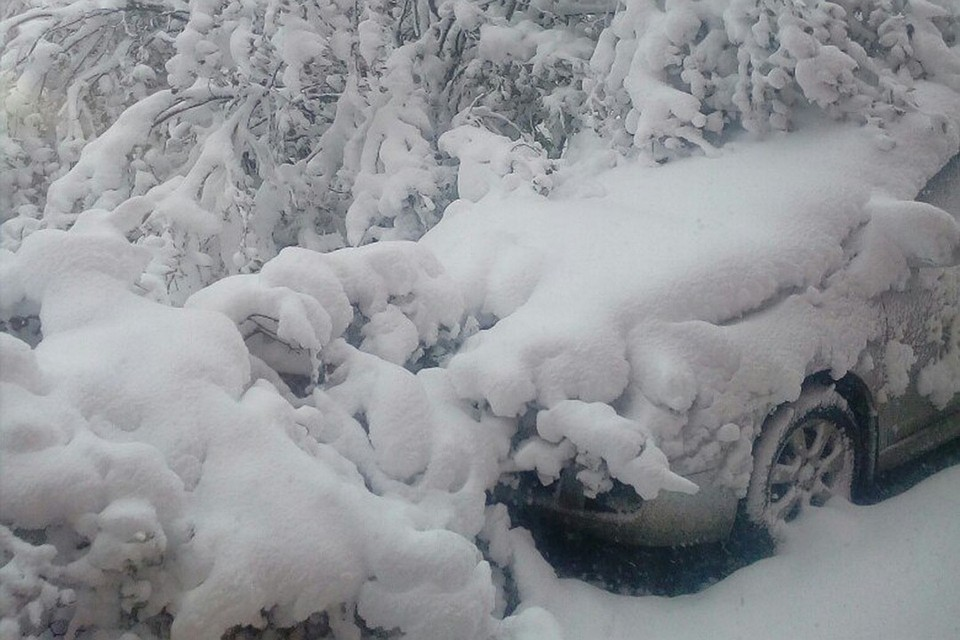 Морозы до-11 градусов игололед ожидаются навыходных вАлтайском крае