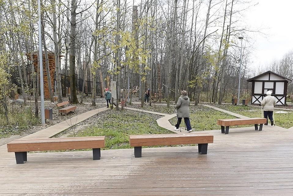 Работы поблагоустройству Горкинско-Ометьевского леса завершены на80%