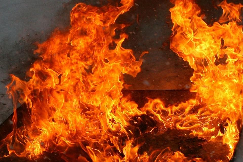 ВУдмуртии впожаре в личном доме погибло трое детей
