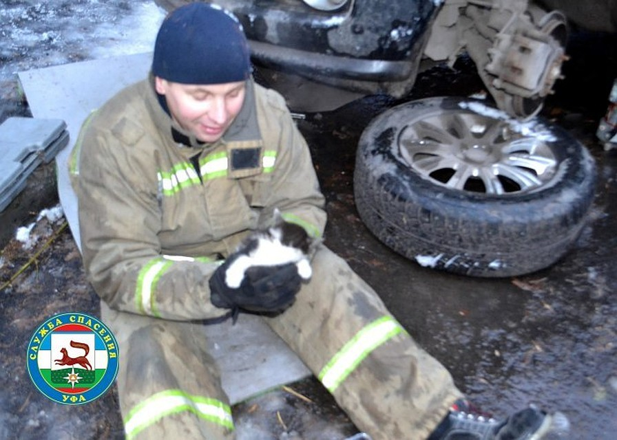Уфимские cотрудники экстренных служб разобрали автомобиль, чтобы достать застрявшего котёнка