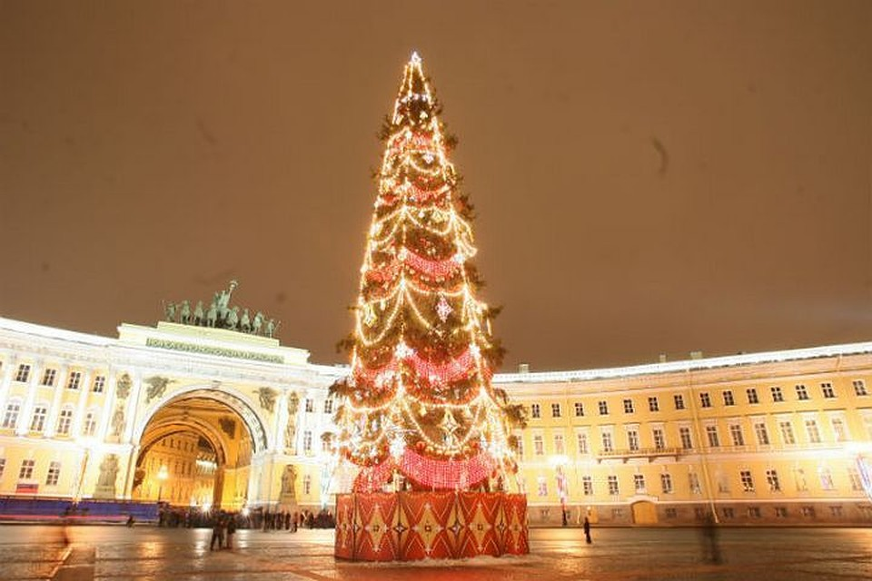 НаДворцовой площади установили главную елку Петербурга