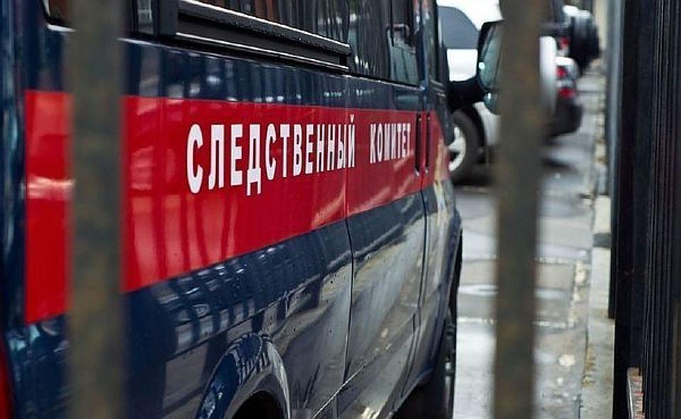 СК: нагородской свалке Нововоронежа отыскали мертвого ребенка