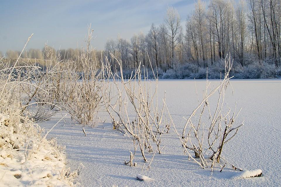 Потепление идождь сменит застенчивый  снегопад в столицеРФ