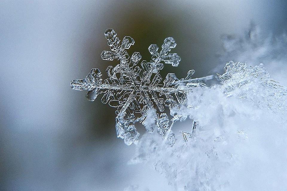 Шведские ученые обнаружили снежинку ввиде полой звезды схоботком