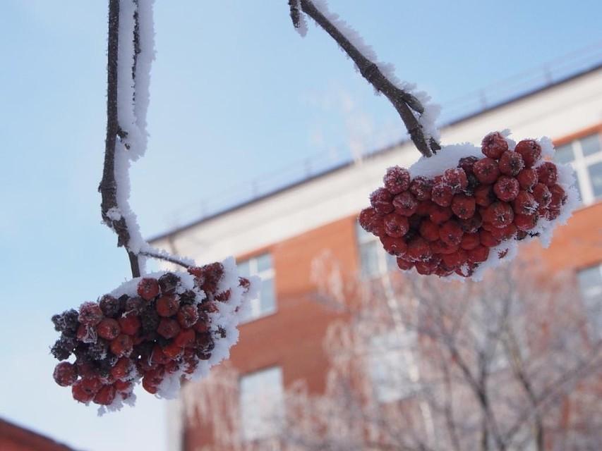 Температура воздуха в столицеРФ ввоскресенье опустится доминус 6 градусов