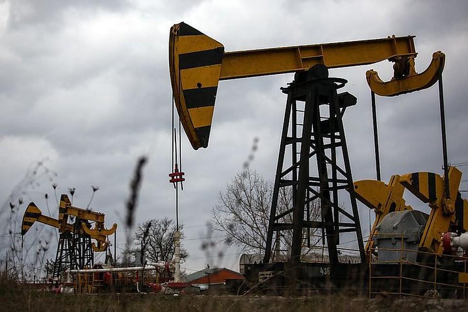 ВТатарстане задержали похитившего неменее 64 тонн дизеля