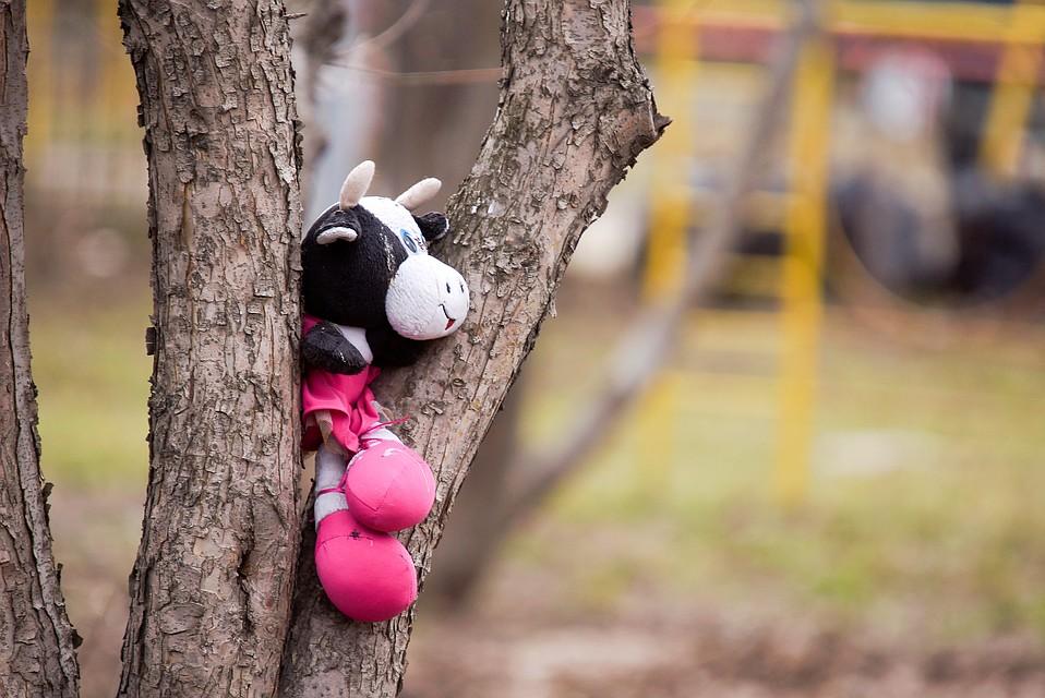 Вовремя прогулки вдетском саду Екатеринбурга пропала пятилетняя девочка