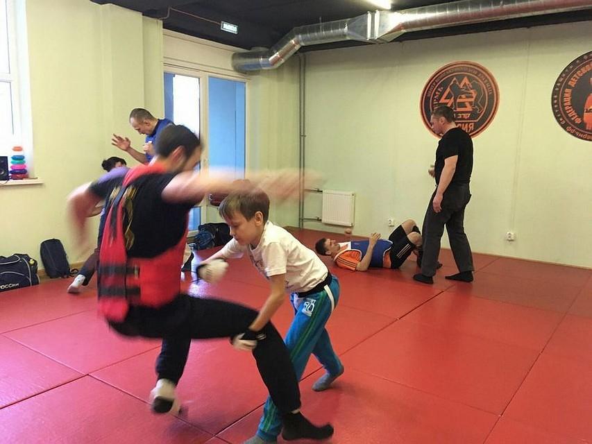 Пермских школьников иучителей хотят обучить азам самообороны