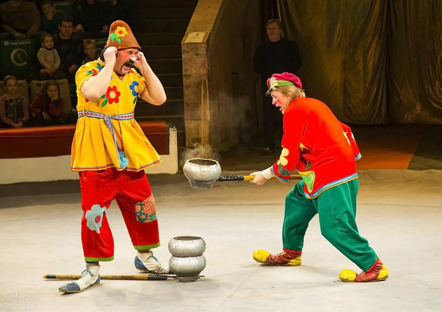 Ростовский цирк остановил работу надва месяца