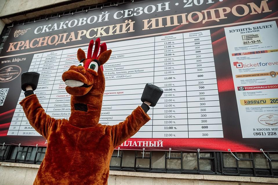 Скаковой сезон-2018 вКраснодарском крае начнется 22апреля