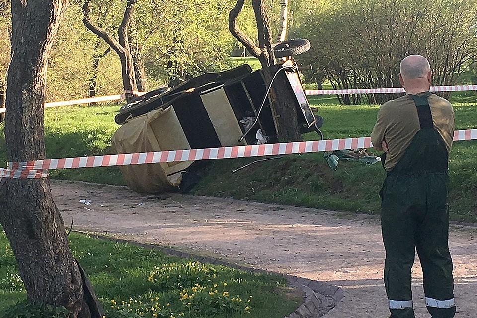 Вмосковском парке опрокинулась повозка спассажирами