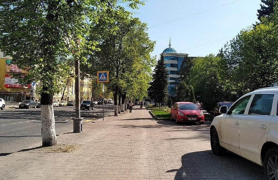ВКурске навыходных пройдет медовая ярмарка