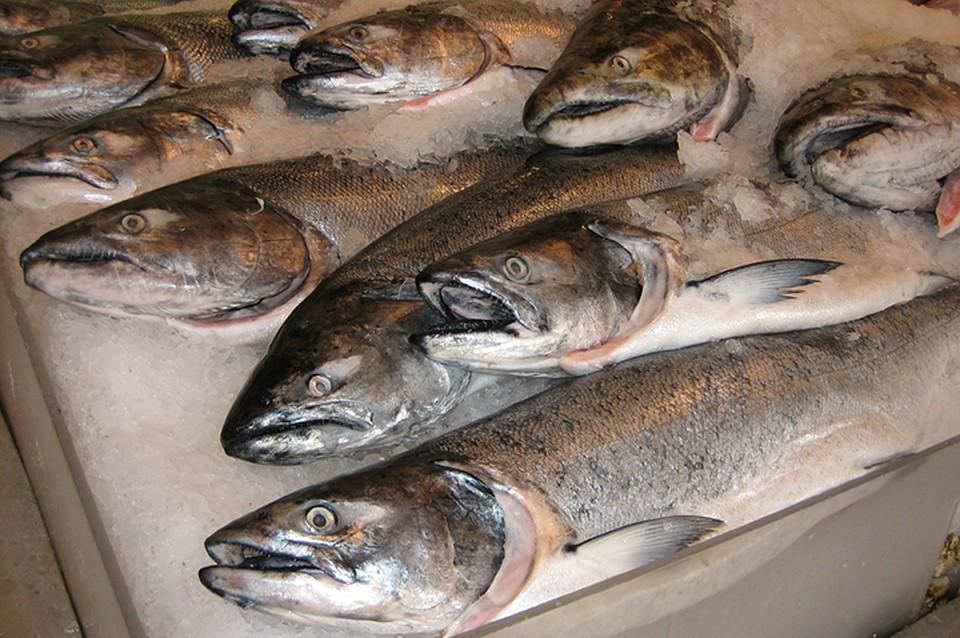 «Доступная рыба» поступит нахабаровские прилавки вэту субботу