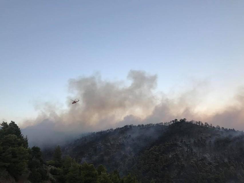 Нагреческом острове Эвбея пожарные пробуют потушить крупный лесной пожар