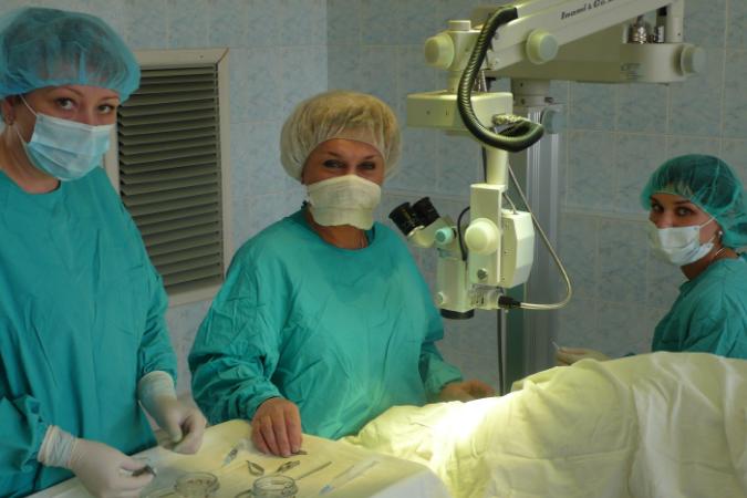 Дежурная стоматологическая поликлиника пушкино