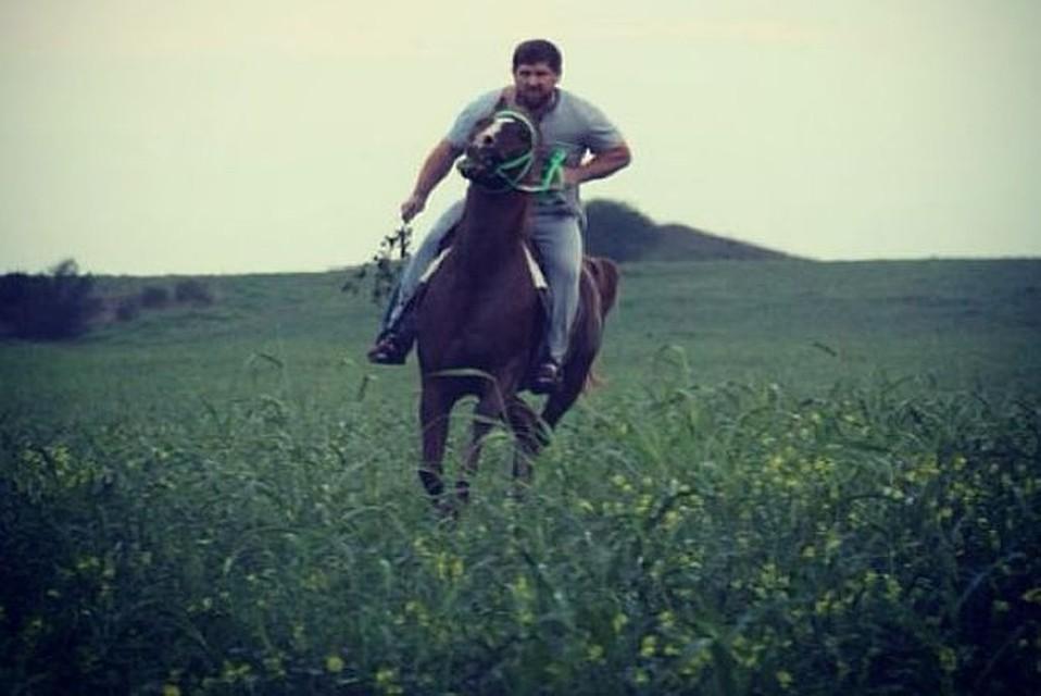 Рамзан Кадыров известен как большой любитель лошадей. Фото: Instagram