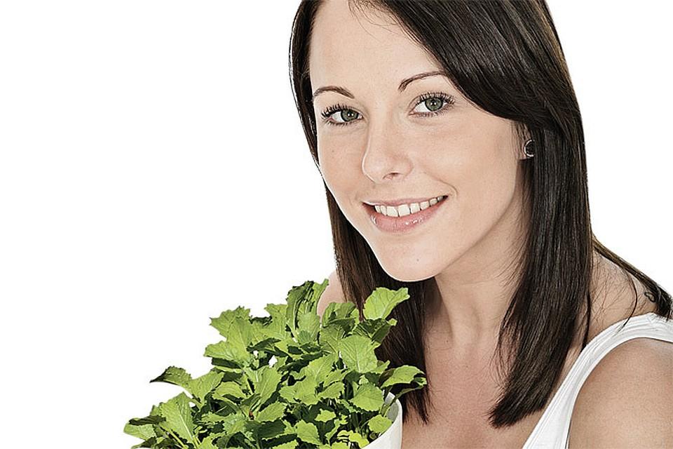 Салат посеять листовой 50