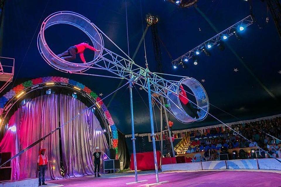 Цирк шапито вНовосибирске оштрафовали засветовое шоу на350 тыс. руб.