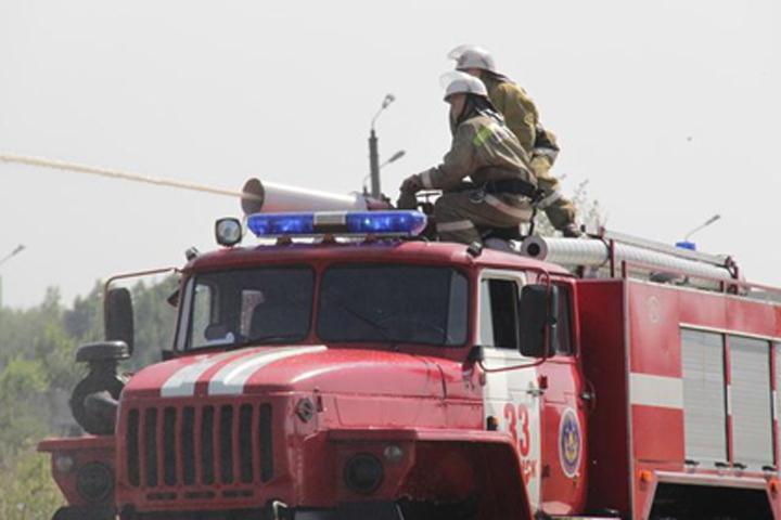 Впроцессе пожара вТрубчевском районе умер семилетний парень