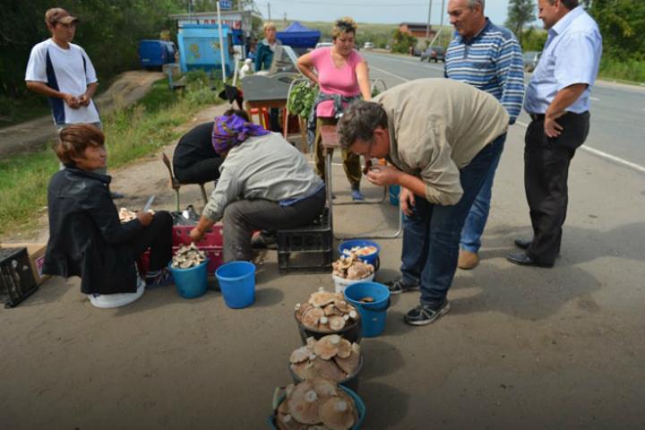 Два человека вРостовской области погибли, отравившись грибами