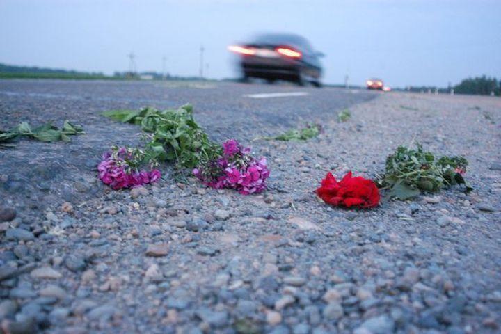 ВНовосибирске вДТП женщину-пешехода разорвало пополам