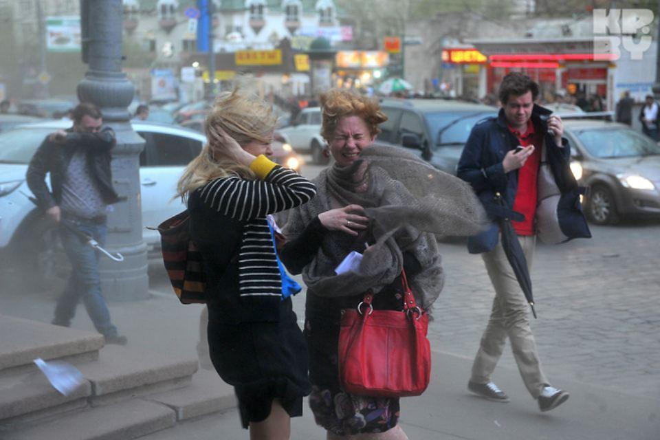 """Из-за сильного ветра в Беларуси сегодня об'явлен оранжевый уровень опасности. Фото: архив """"КП""""."""