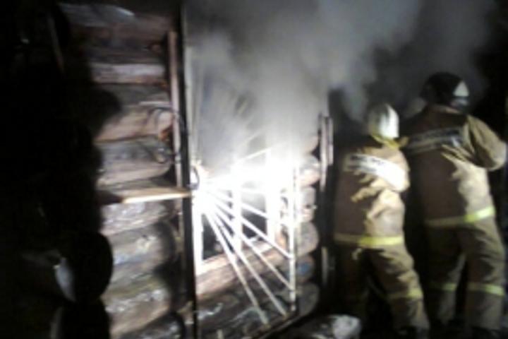 ВТоропце напожаре умер мужчина иего 2-летний сын