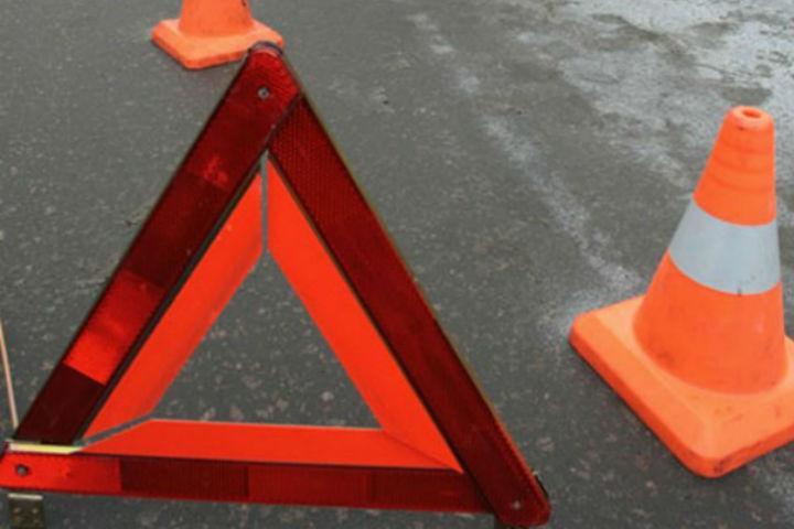 Насевере Петербурга автоледи сбила девочку, выбежавшую надорогу