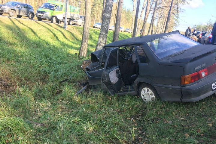 Натрассе «Кола» шофёр наВАЗ-2115 влетел вдерево, необошлось без жертв