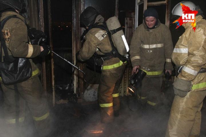 С огнем боролись 14 спасателей Фото: МЧС России