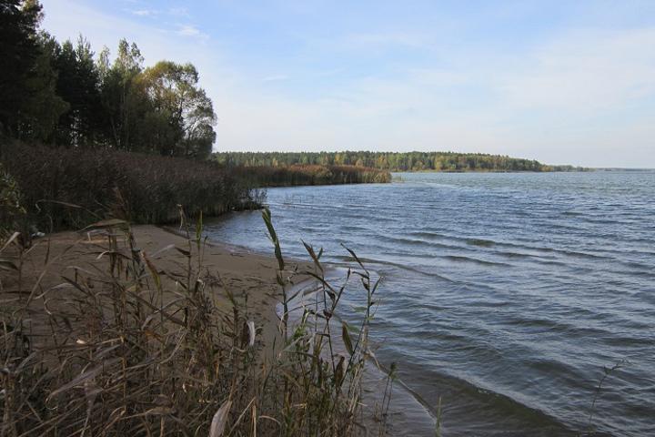 Минчанин убил жену и утопил тело в Вилейском водохранилище. Фото: СК